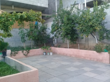 A small garden in one of Gaza's houses in the Jabalia camp.